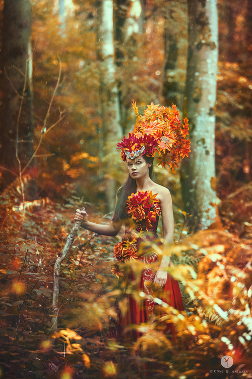 fantasy, photography, autumn, firebird, headddress, millinary, costume