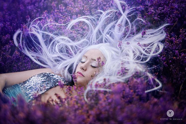 fantasy, art, photography, sleeping beauty, storybook, cinderella, heather, Ireland